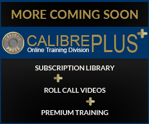 Calibre Plus Online Training Division